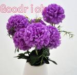 artificial hydrangea flower bushes Manufactures