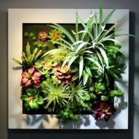 Metal Frame Artificial Plants Wall Decoration Wall Mounted Hanging Art for Store Gallery Manufactures