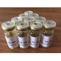 10ml/Vial Testosterone Enanthate Steroid Oil 315-37-7 For Building Muscle Manufactures