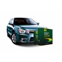 China High Gloss Fast Dry Water Resistance Pearl Automotive Paint on sale
