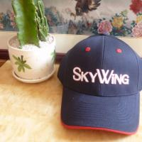 Ladies 3D Blank Embroidered Golf Hats / Golf Ball Caps Various Color Manufactures