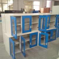Laboratory Hanging Cabinet Lab Storage Cabinet Wall Cupboard Steel Wall Cabinet for Lab School Offfice Home Use Manufactures