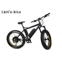 2 Wheels Electric Assist Fat Tire Mountain Bike With Disc Brakes 40 - 60km/h Max Speed Manufactures