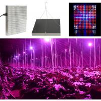 45 W Full Spectrum LED Grow Lights For Hydroponics , 50~60Hz Frequency Manufactures