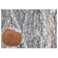 China White Willow Bark Natural Anti Inflammatory Supplements Relieve Headache HPLC Test on sale