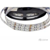 China SMD5050 RGB flexible strip 24 volt led rope light with high quality on sale