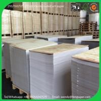 China 200 230 250gsm 61*86cm Gloss Coated 2 Side Art Paper Couche Paper Matt Paper on sale