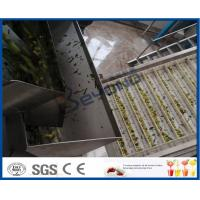 Chinese Date Fruit Juice Processing Line , ISO9001 Fruit Pulp Processing Plant Manufactures