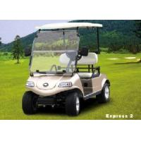 China Electric Golf Car/Cart/Buggy (DEL3022G, 2-Seater) on sale