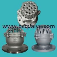 DIN Lift Type Foot Check Valve for Water Pump BOTTOM VALVE Manufactures