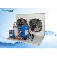 Low Vibration Cold Room Cooling Unit Cold Storage Refrigeration Units Manufactures