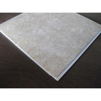 Mothproof PVC Ceiling Panels Plastic Wall Plate Environmental Manufactures