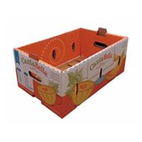 China Corrugated Mailing Packaging Shipping Boxes Printed Carton Box For Vegetable on sale