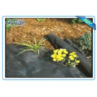 Anti UV Non Woven PP Ground Cover / Weed Control Fabric / Landscape Fabric Manufactures