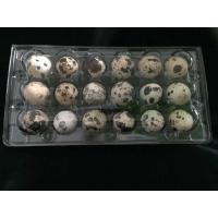 18 Holes Clamshell clear transparent plastic PVC quail egg tray Manufactures