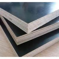 Excellent Quality Black Film Faced Plywood for Formwork