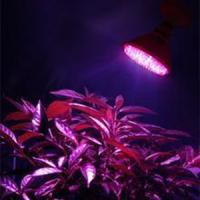 MR16, GU10 AC / DC12V 15w PVC, Aluminum Epistar LED Panel Grow Lights For Leafy Flowers Manufactures