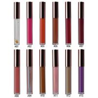 China 15 Colors Lip Makeup Cosmetics Lipgloss Moisturizing 10g With Private Logo on sale