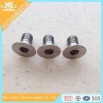 High Precision M3 Pure Titanium Hex Socket Flat Head Screws Manufactures