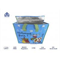 Insulated Food Bags With Opp Lamination , 120g / M² Promotional Cooler Bags Manufactures