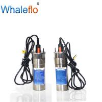 China Whaleflo WEL2460-30 24V 12LPM Max Lift 100 M 5.0 A DC Solar Powered Submersible Water Pump System For Deep Wells on sale