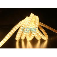 China 180 - 264V 2 Rows Type High Voltage LED Strip Light Flexible 2 Years Warranty on sale