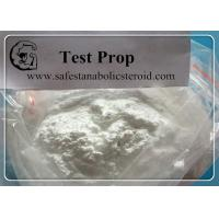 Test / PropTestosterone Propionate Steroid Powders For Muscle Body Fitness Gaining Manufactures