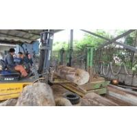 Automatic vertical band sawmill with CNC carriage wood cutting machine Manufactures
