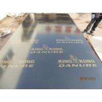 BLACK FILM FACED PLYWOOD, KINGKONG BRAND 。MR GLUE, POPLAR CORE, BLACK FILM or BLACK PRINTED FILM.HIGH QUALITY Manufactures