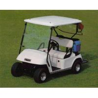 Electrical Golf Cart Model EW-AM2 Manufactures