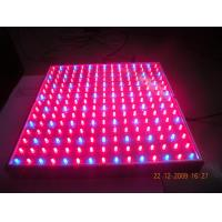 China 14W LED plant growing lights no need outside power supply  on sale