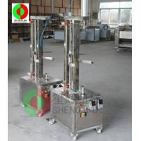 TP-250 Stainless steel fruits peeling machinefor industry Manufactures