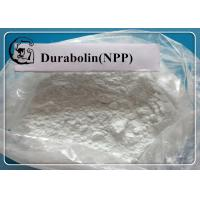 NPP / Durabolin /  Nandrolone phenylpropionate Raw Steroid Powders for Bodybuilding CAS 62-90-8 Manufactures