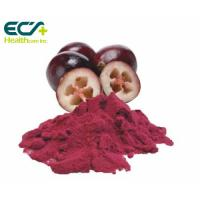 Red Cranberry Fruit Powder , Natural Food Supplement Powder Prevent Cancer