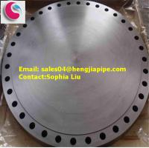ASTM A182 F304 blind flange Manufactures