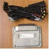 China LPG CNG sequentional injection ECU on sale