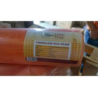 5mm * 5mm 120g / m2 Fiberglass Mesh Alkali Resistant For Wall Covering Manufactures