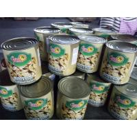 Canned Whole Mushroom In Tins 24*425ml / NW. 425g DW. 200g 180g or Big Size Manufactures