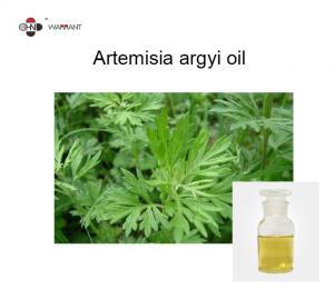 Artemisia Argyi Oil Manufactures