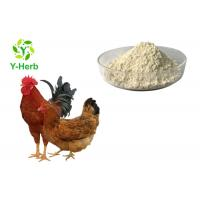 China Feed Grade Thermostable Phytase Powder Enzyme For Poultry Feed Livestock Additive on sale
