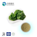 Brassica Oleracea Organic Plant Powder Light Green Fine Powder Anti-Inflammatory Manufactures
