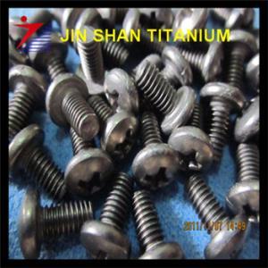 titanium flat head screw Manufactures
