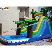 Childrens Outdoor Inflatable Water Slides for parties (amusement game, amusement park) Manufactures