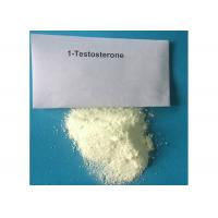 Safe 1-Testosterone Anabolic Steroid Raw Hormone Powders White Odourless Solid CAS 65-06-5 Manufactures