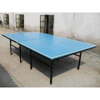Outdoor Table Tennis Table (W-3301) Manufactures