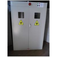 Lab Steel Compressed Gas Cylinder Cabinets Two - Door With Perspective Window Manufactures