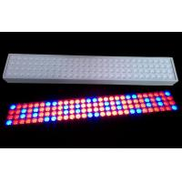 Buy cheap 50 W SMD LED Tube Grow Lights 900mm Length With 50~60Hz Frequency from wholesalers