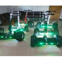 Night vision Smart TwoWheels Off-road Golf Cart Dune buggy Electric Carrier Electriic Cart Manufactures