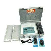 Massage Detox Foot Spa Machine For Two People Use At The Same Time Manufactures