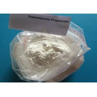 Weight Loss Injection White Raw Steroid Hormone Powder Testosterone Propionate Manufactures